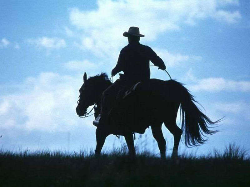Santal 33 lấy cảm hứng từ hình ảnh chàng cao bồi cùng con ngựa của mình trên vùng đất hoang dã dưới bầu trời cao trong xanh